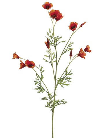 "26"" Mini California Poppy Spray Orange"
