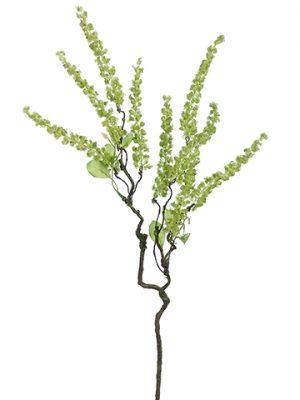 "26"" Amaranthus Spray Lime"