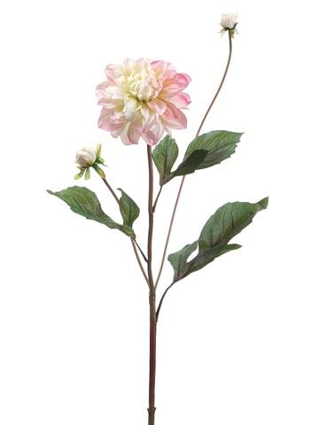 """26"""" Garden Dahlia Spray Pink Cream"""