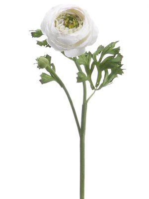 """13"""" Ranunculus Spray Cream Burgundy"""