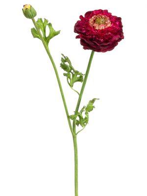 """21"""" Ranunculus Spray Burgundy Green"""