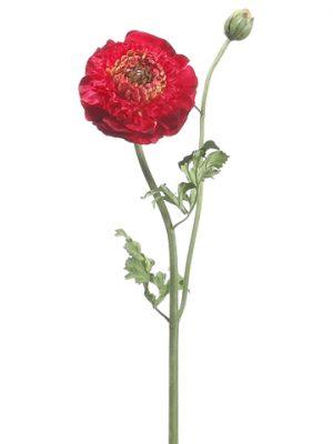 "21"" Ranunculus Spray Red"