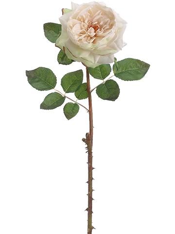 """20"""" English Rose Spray Vanilla"""