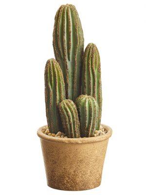 """9.5"""" Column Cactus in PaperMache PotGreen"""