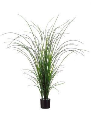 """57"""" Grass Bush in BlackPlastic PotTwo Tone Green"""
