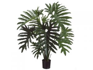 "31"" Selloum Philodendron Plant in Plastic Pot Green"