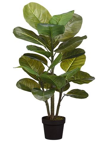 """36"""" Large Leaf Rubber Plantin PotGreen"""