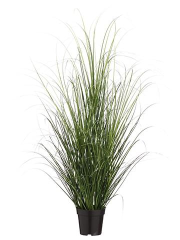 "48"" Grass Bush in Pot Two Tone Green"
