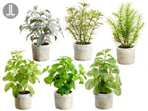 """8.5""""-10.5"""" Herb Garden inClay Pot (6 ea/set)Green Gray"""