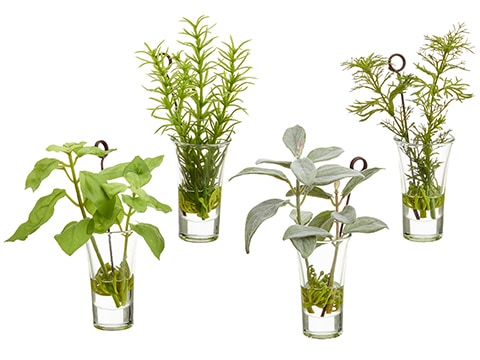 "6.5""H-7.5""H Herb GardenNamecard Holder in Glass Vase(4 ea/set) Green Gray"