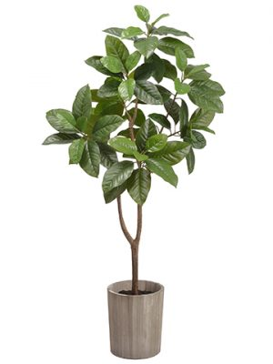 "47.2"" Michelia Alba Tree in Wood Planter Green"