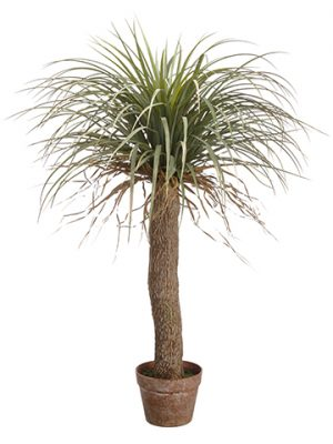 "38"" Desert Palm Tree in Plastic Pot Green Beige"