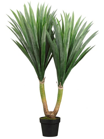 """43"""" Tropical Yucca Plant inPotGreen"""
