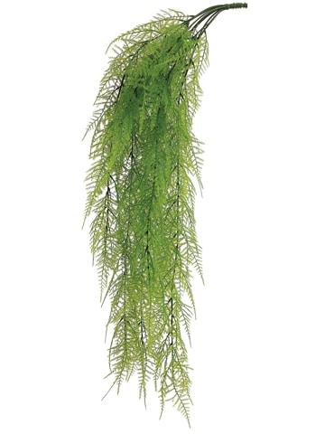 "33"" Asparagus Fern HangingBush x9Light Green"