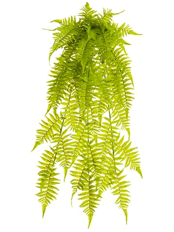 "35"" UV Protected Soft PE Boston Fern Hanging Bush Green"