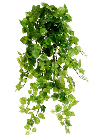 "32"" Kangaroo Ivy Hanging Bush x12 Green"