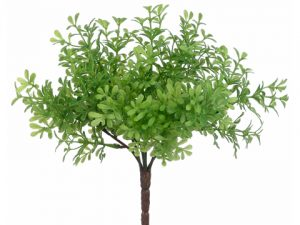"8"" Thyme Bush Green"