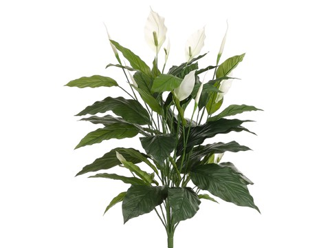 "35"" Spathiphyllum Plant w/44 Leaves Green"