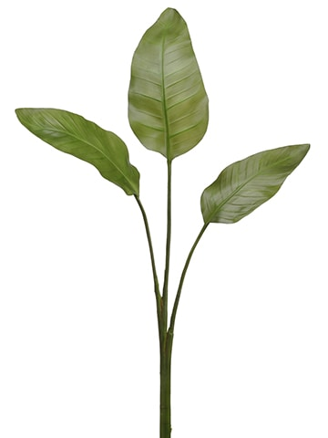 "50"" Bird of Paradise Leaf Spray x3 Green"