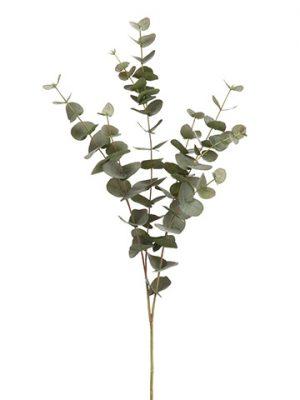 """40"""" Eucalyptus Spray Green Gray"""