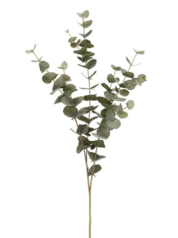 "40"" Eucalyptus Spray Green Gray"