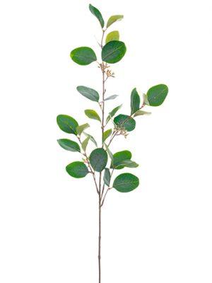 """30"""" Eucalyptus Spray Green Gray"""