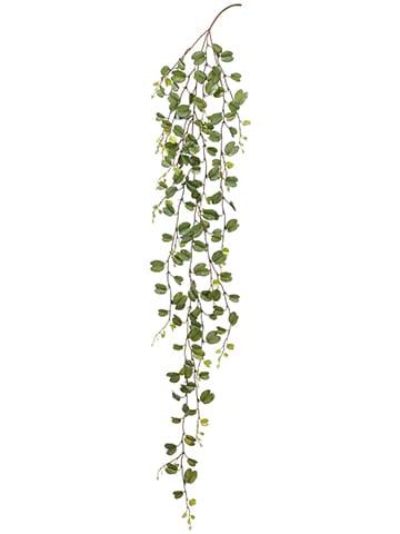 """75"""" Hoya Leaf Hanging Spray Green"""