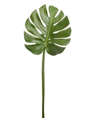"38"" Monstera Leaf Spray Green"
