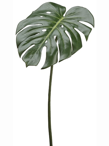 "23"" Philodendron Spray Green"