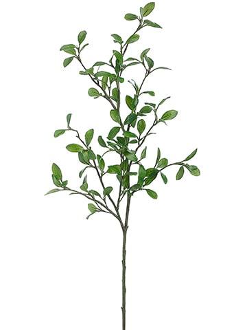 """42"""" Rose Myrtle Leaf Spray Green"""