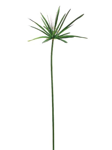 "60"" Cypress Grass Spray w/20 Leaves Green"