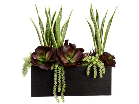 """28""""H x 16""""W x 24""""LEcheveria/Mother-In-Law'sTongue in Bamboo Container Gre"""