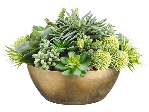 """14""""H x 20""""W x 21""""LEcheveria/Succulent/Allium inMetal Container Light Green"""