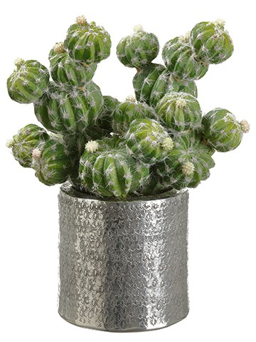 "11.75""H x 7""W x 9.5""L Barrel Cactus in Silver Pot Green"