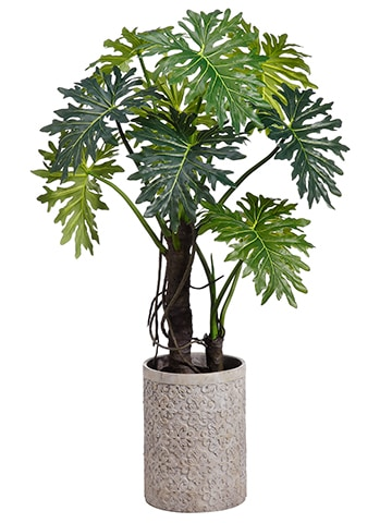 "71"" EVA Plume Split LeafPlant in Fiber Cement PlanterGreen"
