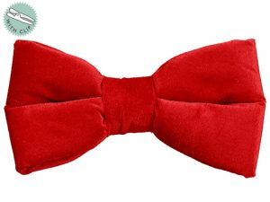 "10"" Velvet Bow With Clip Red"