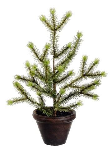 "16"" Pine Topiary in TerraCotta PotGreen"
