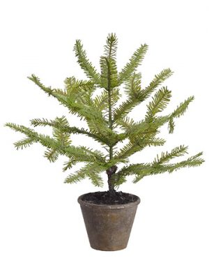 "16"" Spruce Pine Tree in Paper Mache Pot Green"