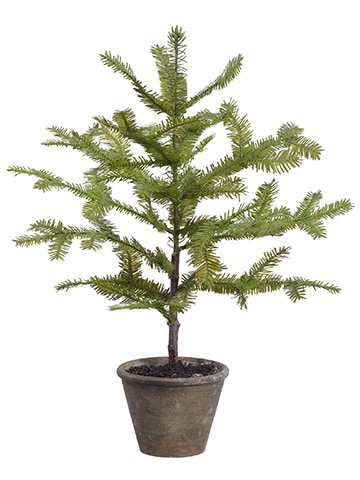 "22"" Spruce Pine Tree in Paper Mache Pot Green"