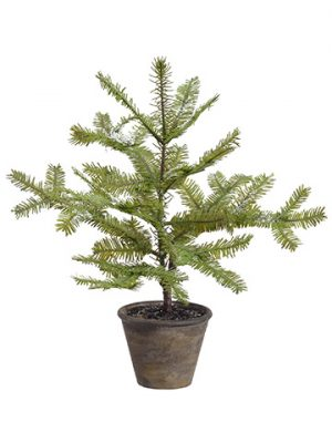 "16"" Snowed Spruce Pine Tree in Paper Mache Pot Green Ice"
