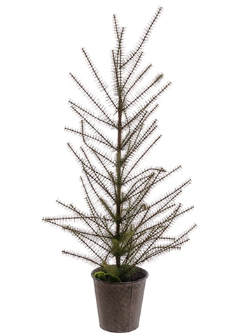 "57"" Pine Tree in Tin Pot Green"