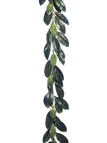 6' Magnolia Leaf Garland w/44LeavesGreen