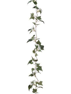 6' Stephanotis With Ivy LeafGarlandWhite