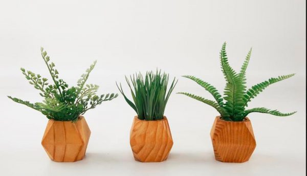 Set of 3 ferns and grass in mid-century geometric pots