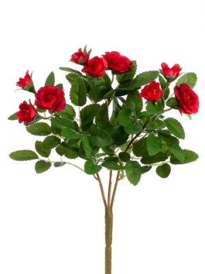 "10"" Mini Rose Bush x3 Red"