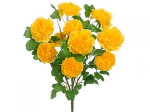 "21"" Ranunculus Bush x10 Yellow"