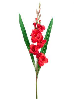 """33"""" Gladiolus Spray Red"""