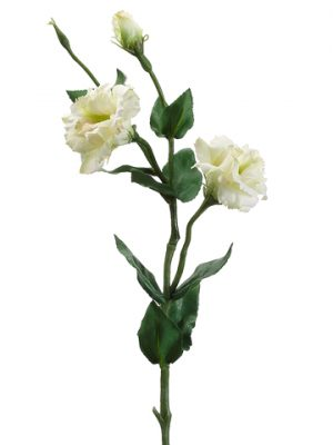"25"" Lisianthus Spray with Water-Resistant Stem Green"