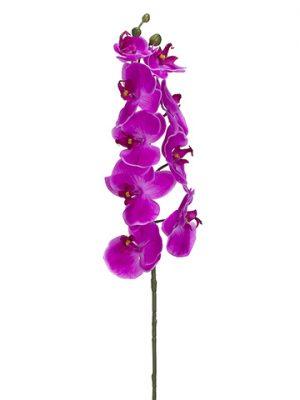 "30"" Phalaenopsis Orchid SprayWith 9 FlowersOrchid"