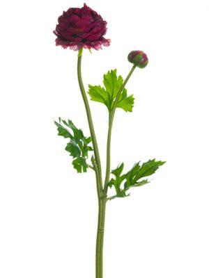 "18.9"" Ranunculus Spray Wine"